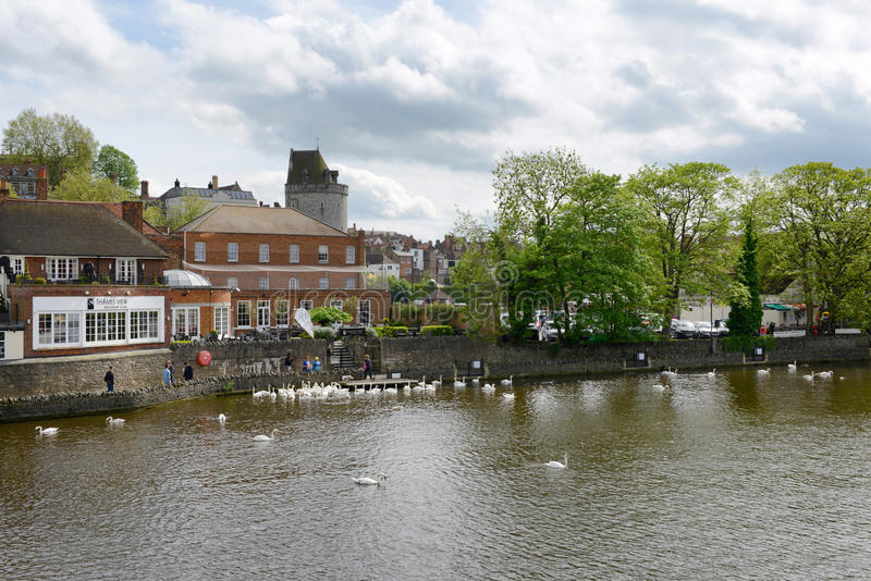 Quaint Riverside Town of Windsor, England. View of Quaint Riverside Town, Flock of White Swans Crowded Around Stone Wall Lining Small Town, Windsor, Berkshire stock photography