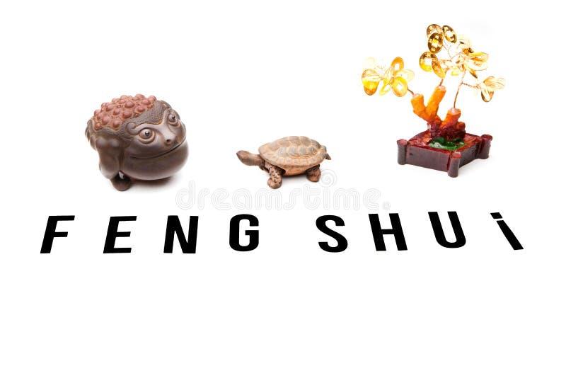 Qualidade do estúdio do shui do feng do sapo dos dinheiros imagem de stock