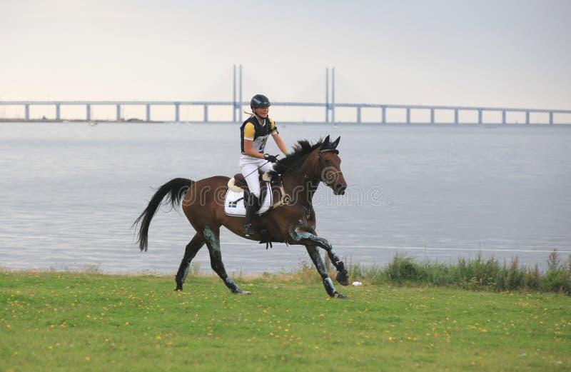 Qualificatif 2011, Suède de Cup⢠Eventing du monde de FEI. photos stock