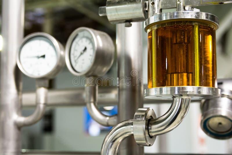 Qualità di misurazione della birra nella fabbrica di birra immagini stock libere da diritti