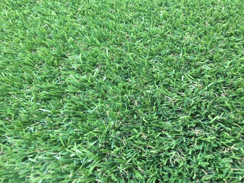 Qualité artificielle d'herbe photo libre de droits