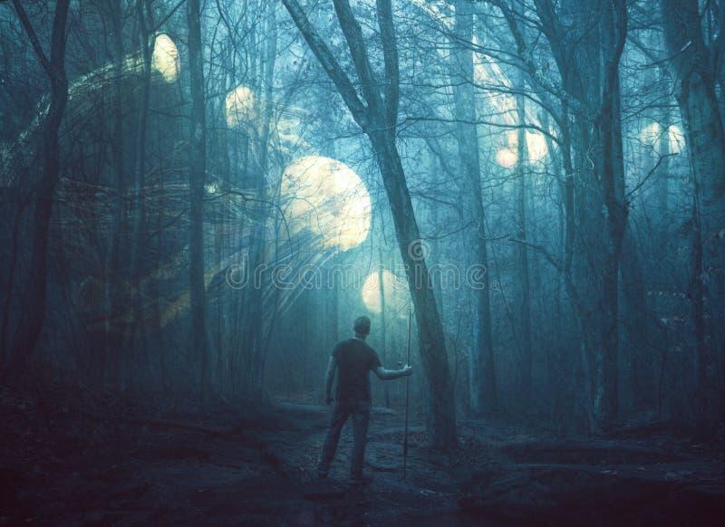 Quallen in einem dunklen Wald lizenzfreies stockbild