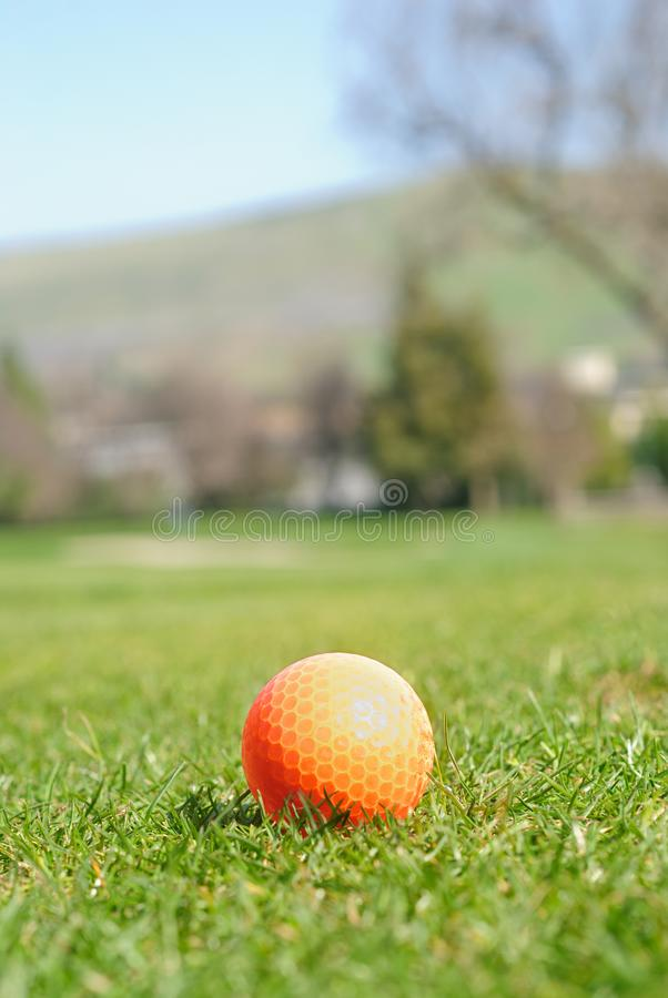 Qualquer um para o golfe? imagens de stock royalty free