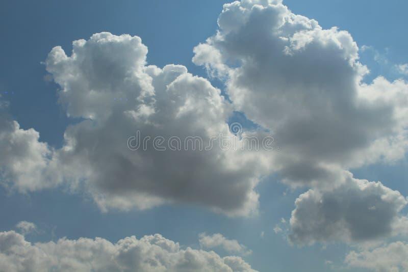 Quando il cotone galleggia nel cielo fotografia stock libera da diritti