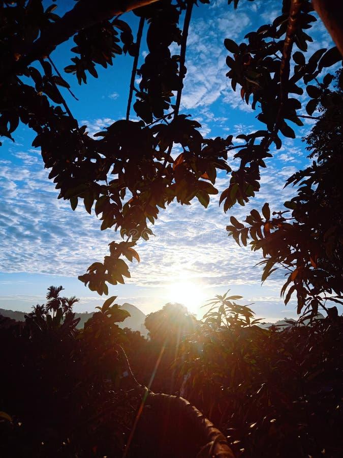 quando o sol da manhã começa a nascer, você pode ver sua beleza tão bela fotos de stock royalty free