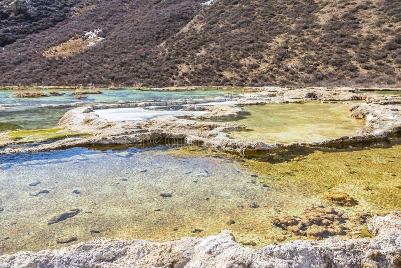 Quanhua dębnik Wapniejący staw obraz royalty free
