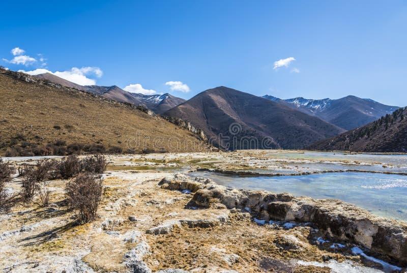 Quanhua dębnik Wapniejący staw obraz stock