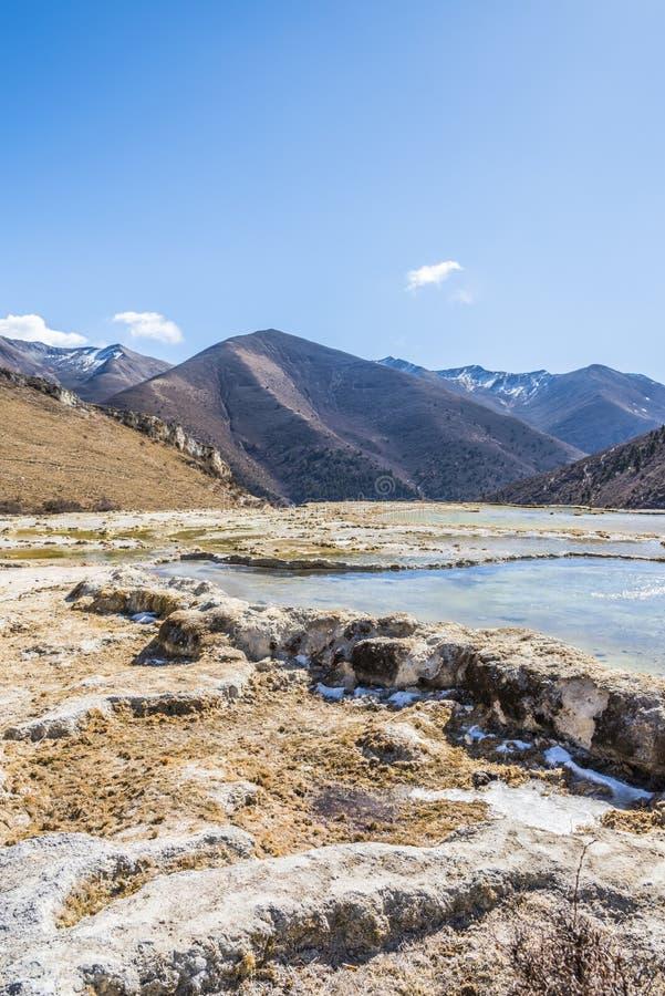 Quanhua dębnik Wapniejący staw fotografia royalty free