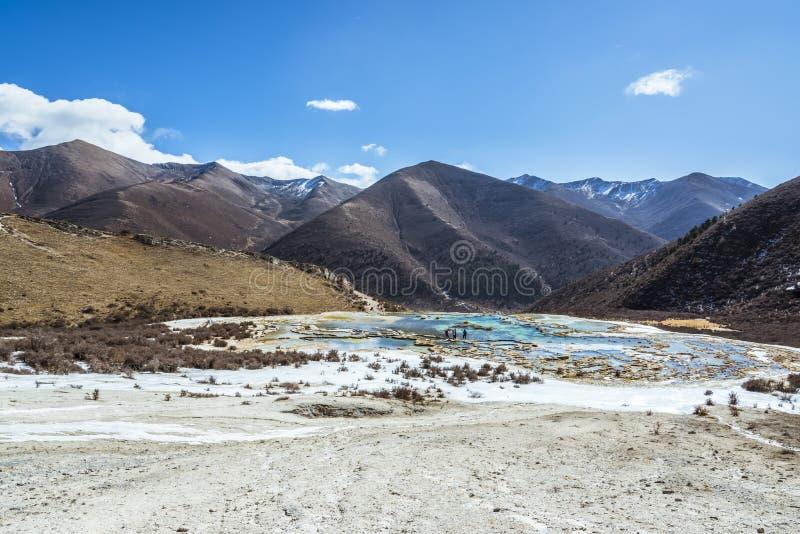 Quanhua dębnik Wapniejący staw obrazy royalty free