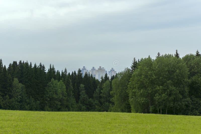 Quart de ville après forêt photos stock