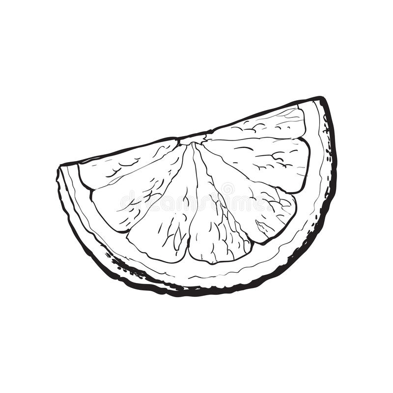 Quart, segment, morceau de pamplemousse mûr, orange illustration stock
