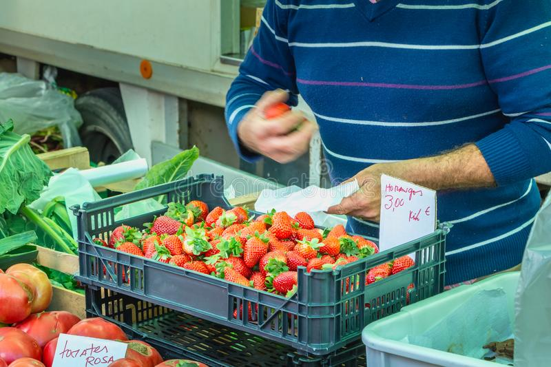 Market gardener proposing strawberries on a municipal market. Quarteira, Portugal - May 2, 2018: Market gardener proposing strawberries on a municipal market of royalty free stock photos