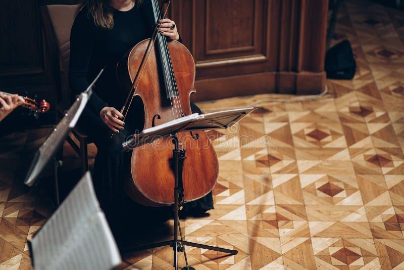 Quartetto di archi elegante che esegue nella stanza di lusso al rece di nozze fotografia stock