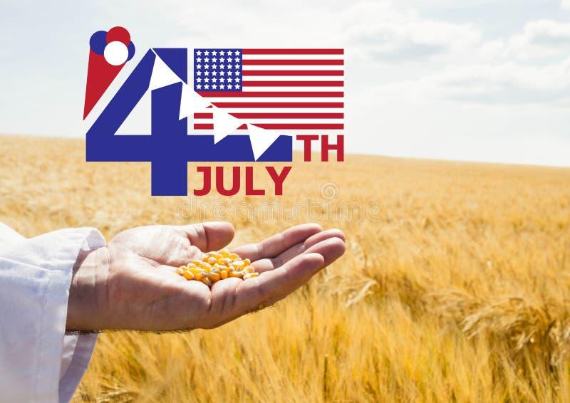Quarto del grafico di luglio con le bandiere ed il gelato contro il cereale della tenuta della mano e del campo di mais immagini stock libere da diritti