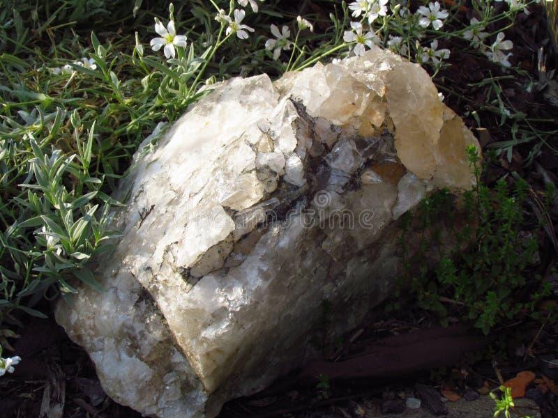 Quartz naturel blanc dans l'herbe, beau cristal transparent images stock