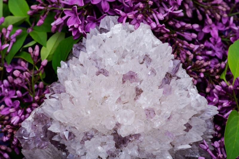 Quarzo dell'ago con l'esemplare ametista circondato dal fiore lilla porpora fotografie stock libere da diritti