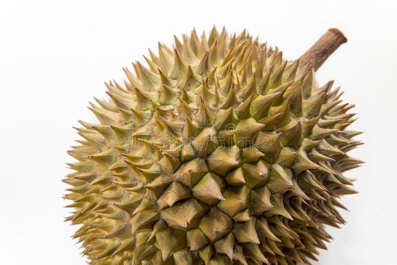 Quase em volta do dado forma do fruto do Durian isolado no fundo branco fotografia de stock royalty free