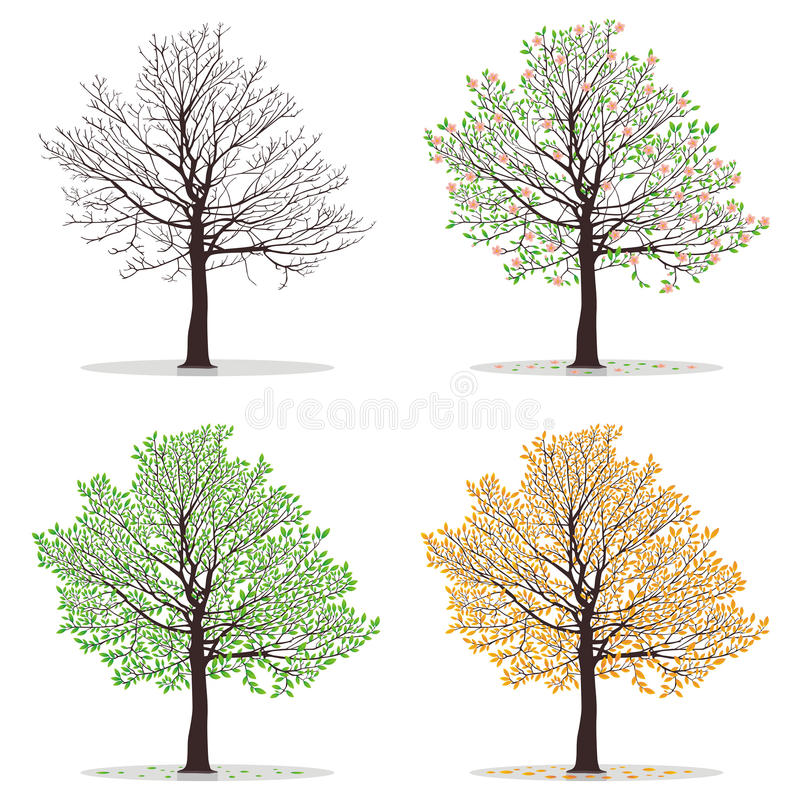 Quatre arbres de saisons illustration stock