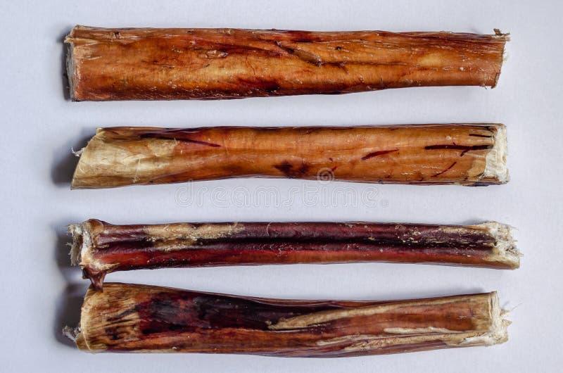 Quatre bâtons de despote de mastication Pizzle de boeuf sec pour des animaux familiers Option horizontale de disposition Fond bla photos libres de droits