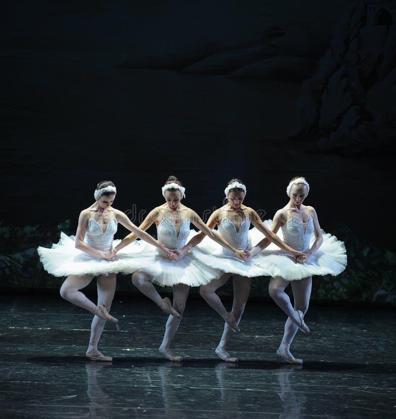 Quatre classiques le petit lac swan de Lakeside-ballet de cygne de danse-Le du cygne photo stock