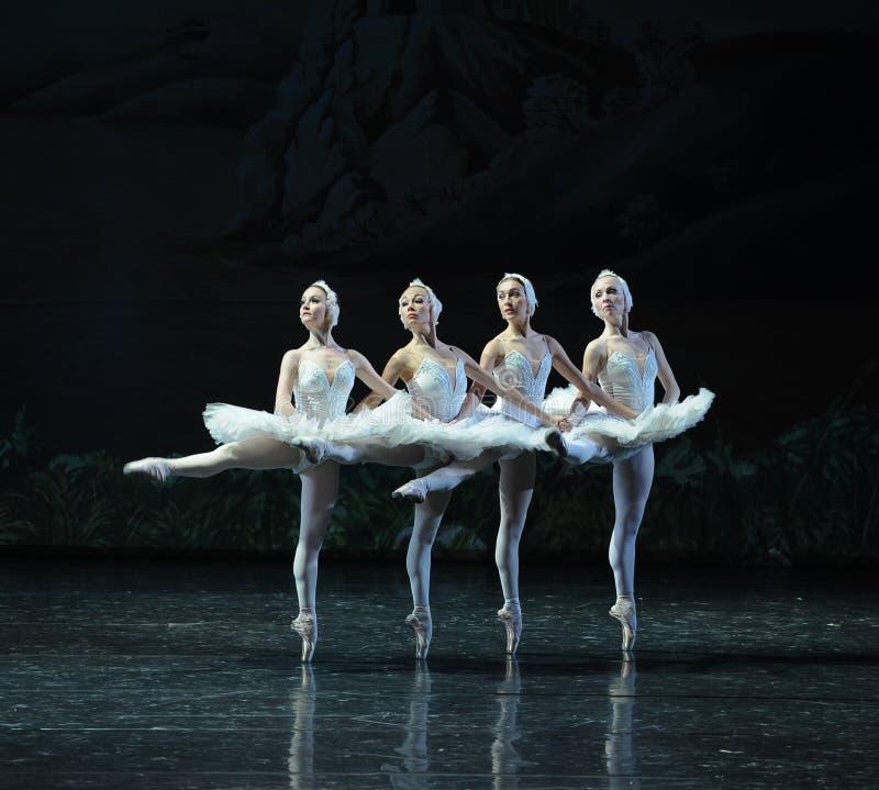 Quatre classiques le petit lac swan de Lakeside-ballet de cygne de danse-Le du cygne photos libres de droits