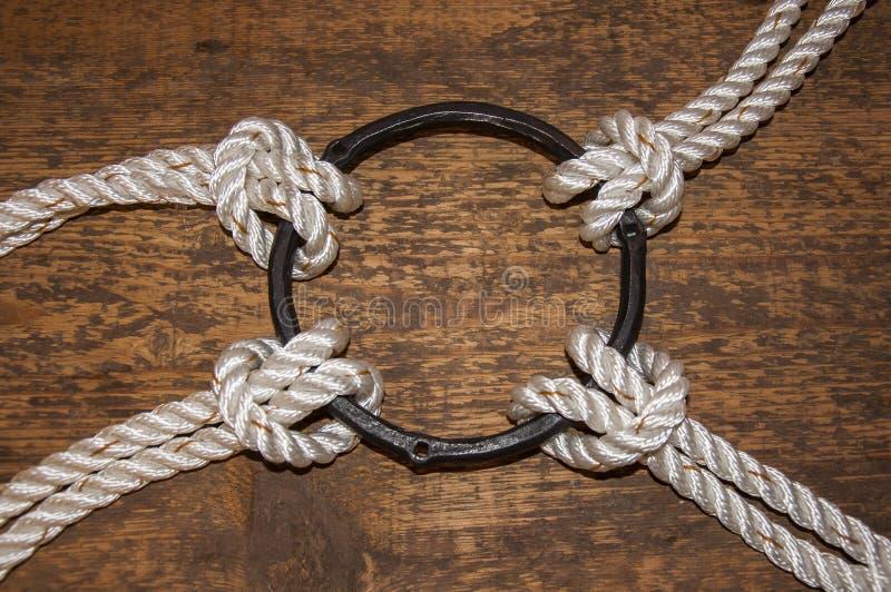 Quatre cordes métallisées sur un cercle de volent photo libre de droits