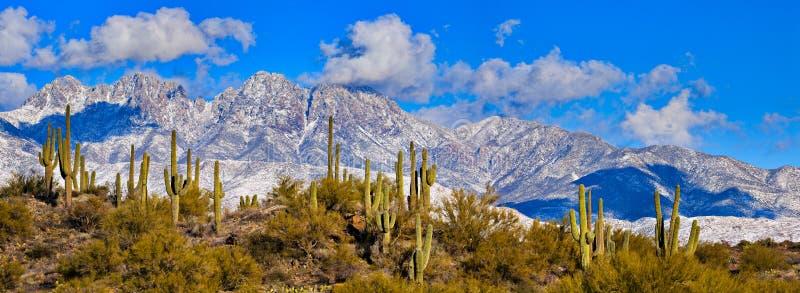 Quatre crêtes, Arizona photos libres de droits