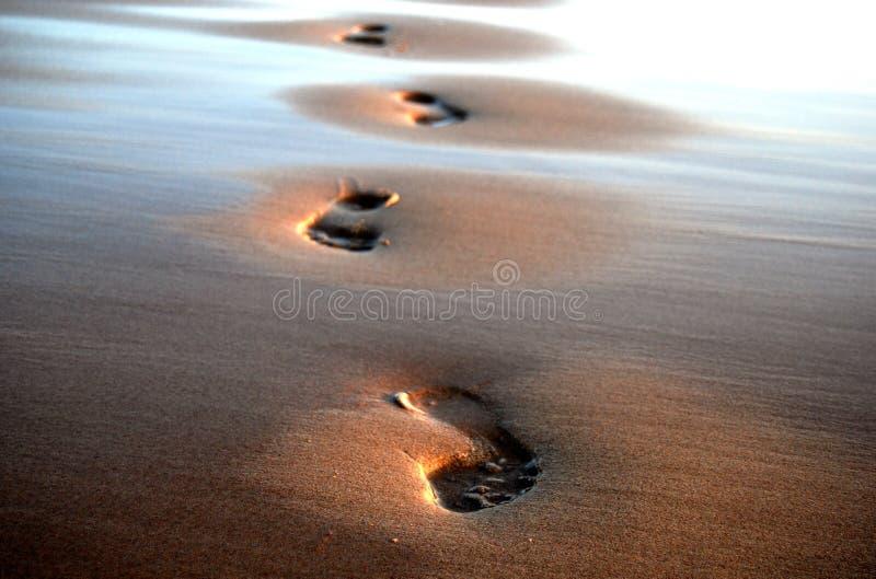Quatre empreintes de pas sur le sable photos libres de droits