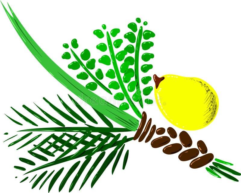 Quatre espèces pour la version 2 de Rosh Hashana illustration libre de droits