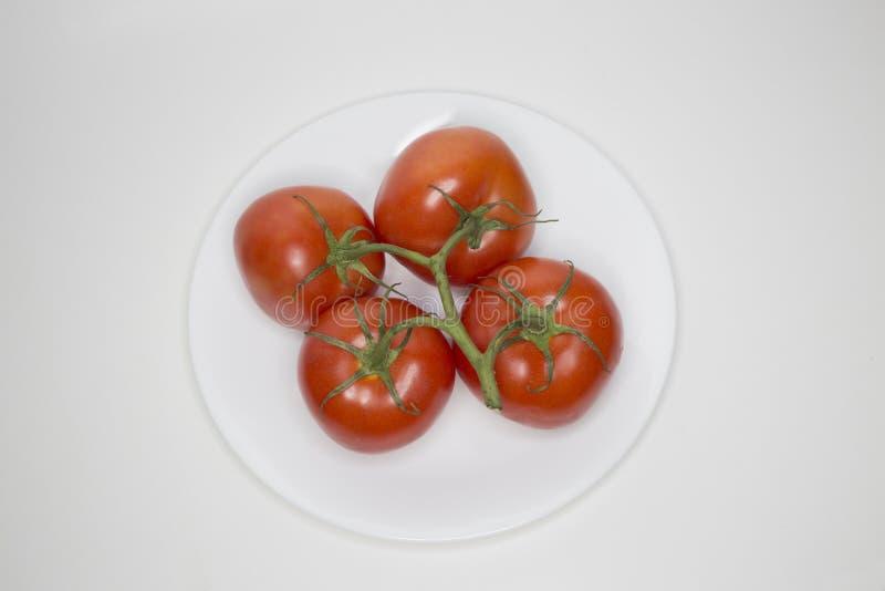 Quatre frais sur les tomates rouges de vigne d'un plat blanc photographie stock