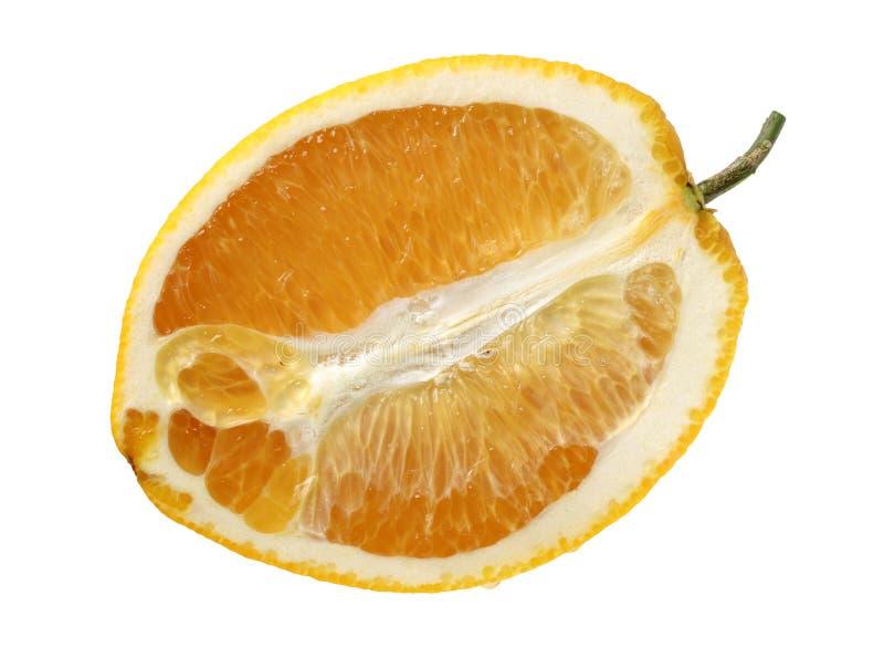 Quatre moitié-ont coupé des oranges photographie stock libre de droits