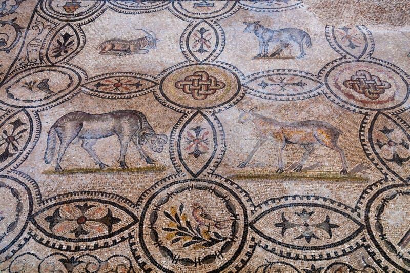 Quatre mosaïques animales à l'intérieur de Basilica di Aquileia image stock
