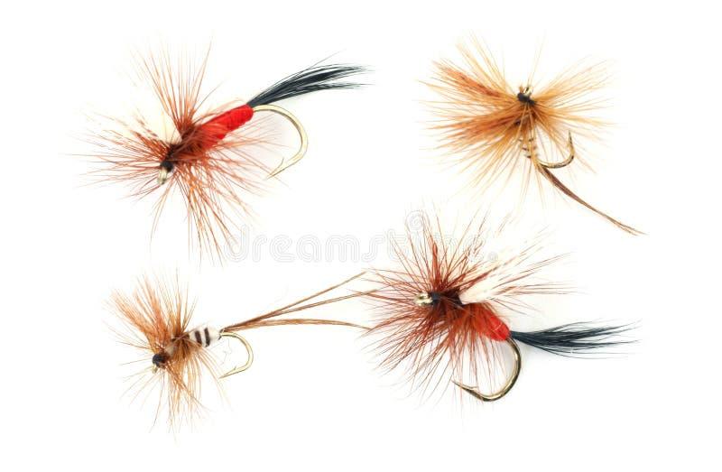 Quatre mouches de pêche de truite image stock
