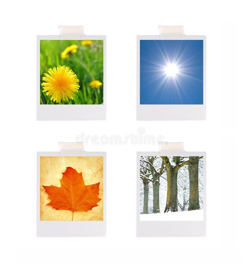 Quatre photographies de saisons images libres de droits