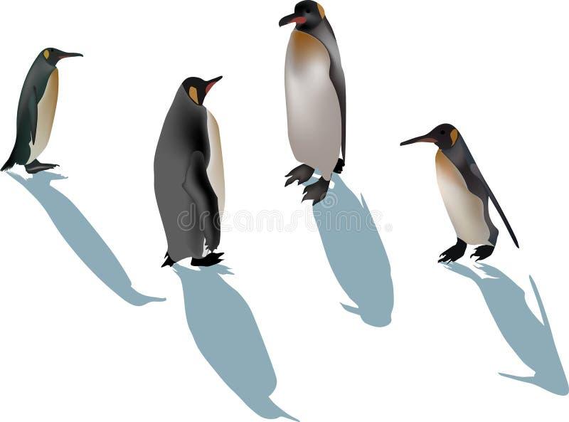 Quatre pingouins avec des ombres sur le blanc illustration stock
