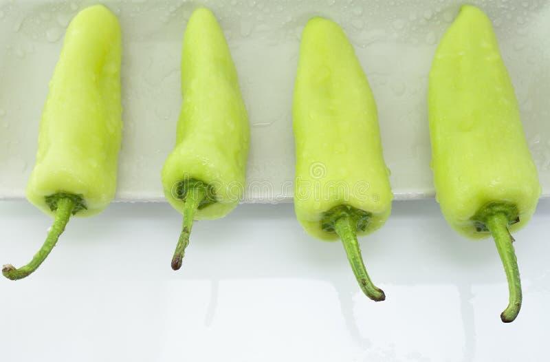 Quatre poivrons verts en composition de la plaque blanche photo stock
