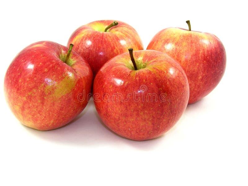 Quatre, pommes fraîches et brillantes images stock