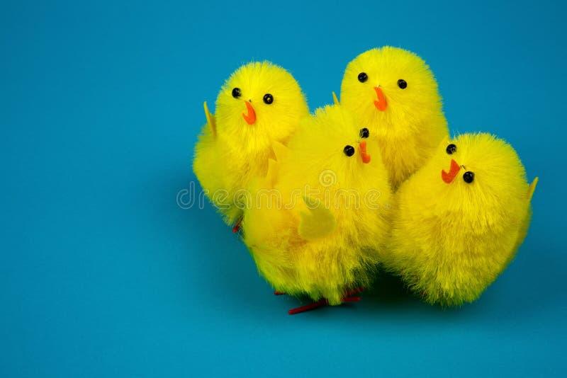 Quatre poussins de Pâques sur le fond bleu photos stock