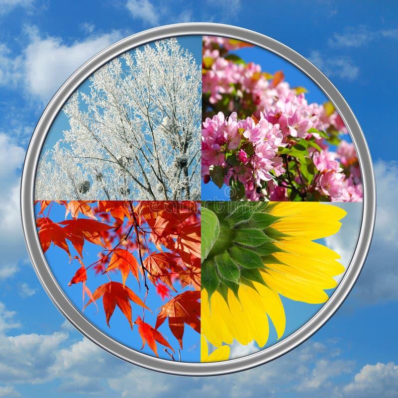 Quatre saisons de l'an sur le fond de ciel images stock
