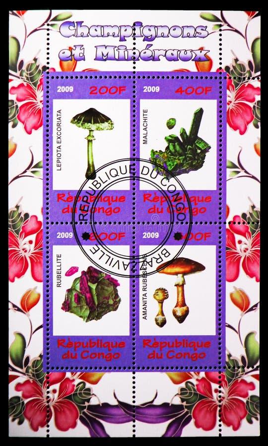 Quatre timbres du serie de champignons et de minerais, vers 2009 photo libre de droits