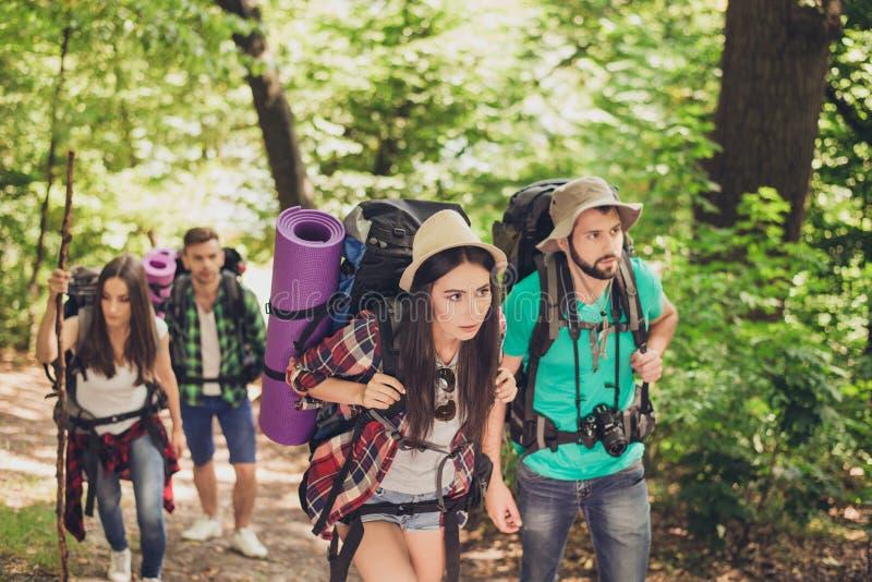Quatre touristes se sont perdus dans la forêt, essayant de trouver la manière, semblant sérieux et focalisés, tous ayant des sacs image stock