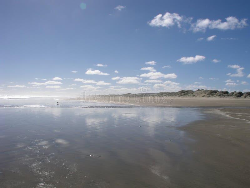 Quatre-vingt-dix plages de mille image libre de droits