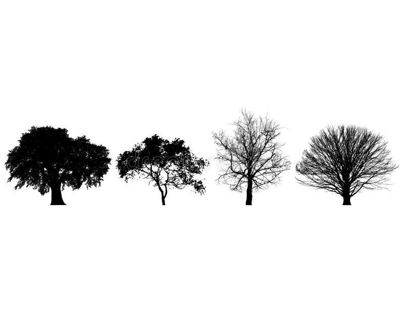 Quatro árvores ilustração do vetor