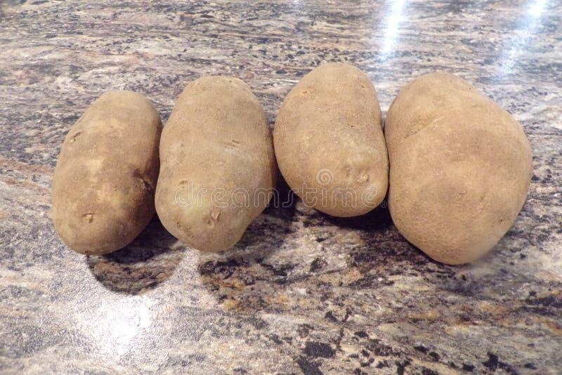 Quatro batatas prontas para cozinhar fotografia de stock