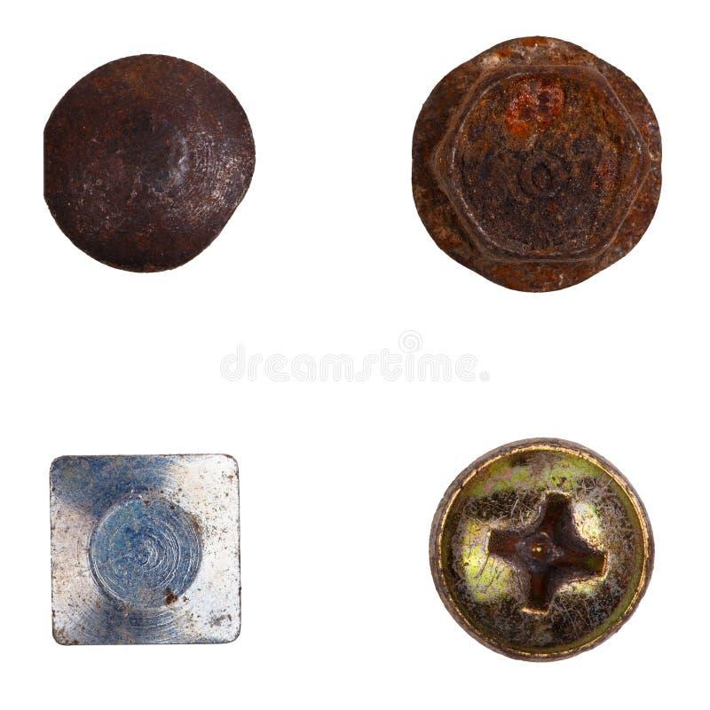 Quatro cabeças de parafuso diferentes foto de stock royalty free