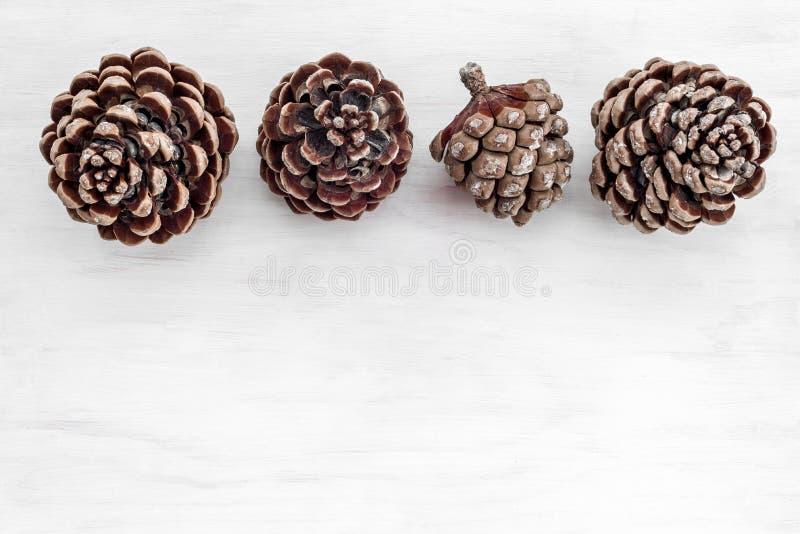 Quatro cones do pinheiro no fundo de madeira branco imagens de stock
