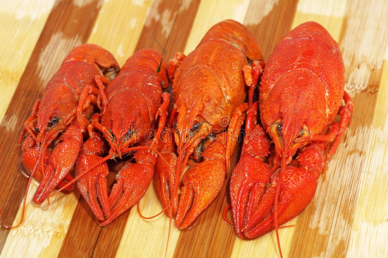 Download Quatro Crawfishes Fervidos Vermelhos Tomados O Close Up. Foto de Stock - Imagem de garra, vermelho: 26514502