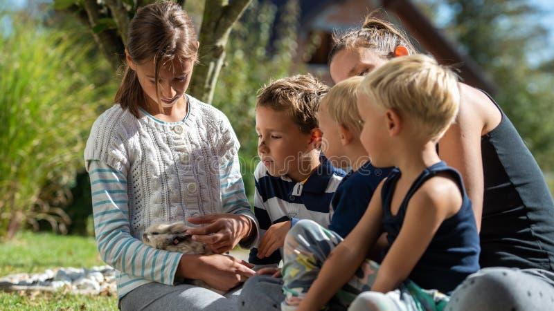 Quatro crianças com seu coelho do animal de estimação das trocas de carícias do mum imagem de stock royalty free