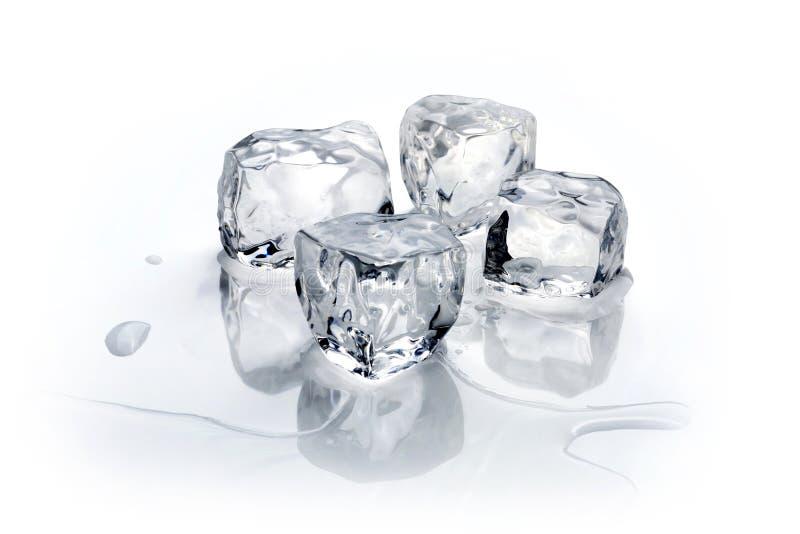 Quatro cubos de gelo fotografia de stock royalty free