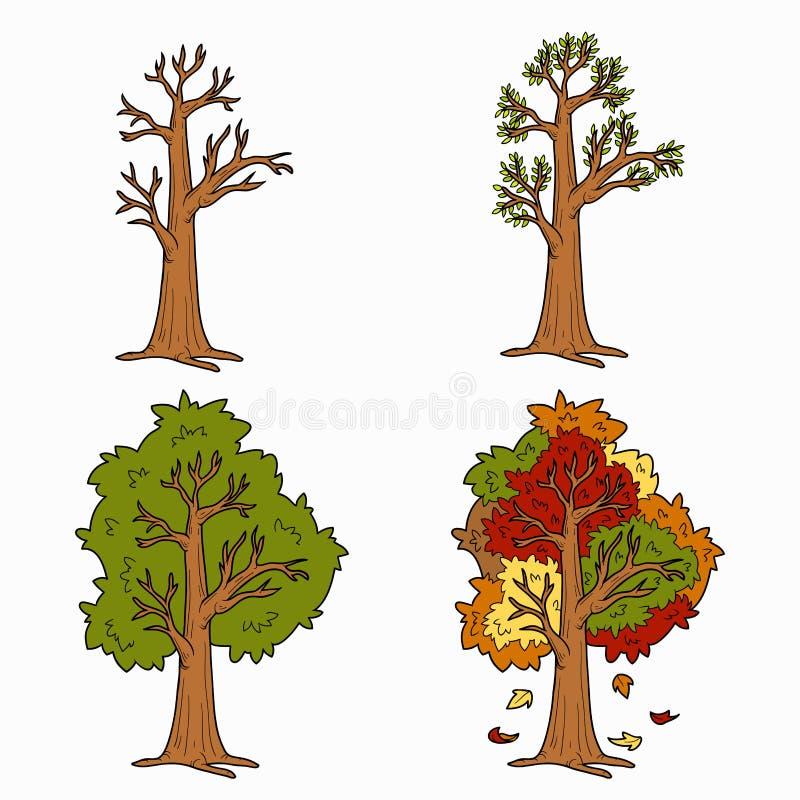 Quatro estações, grupo do vetor das árvores ilustração royalty free